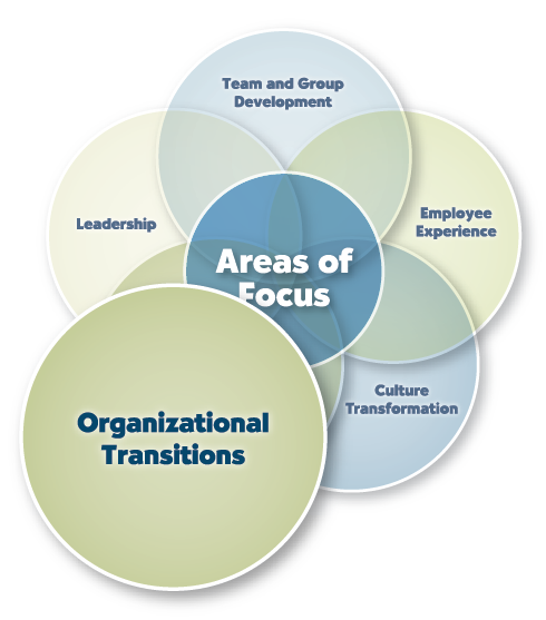 Organizational Transition transition