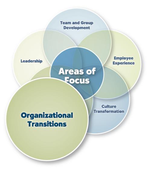 Organizational Transition transition
