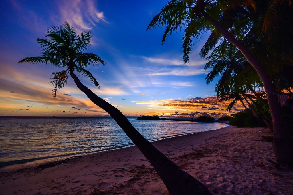 beach-calm-clouds-coconut-trees
